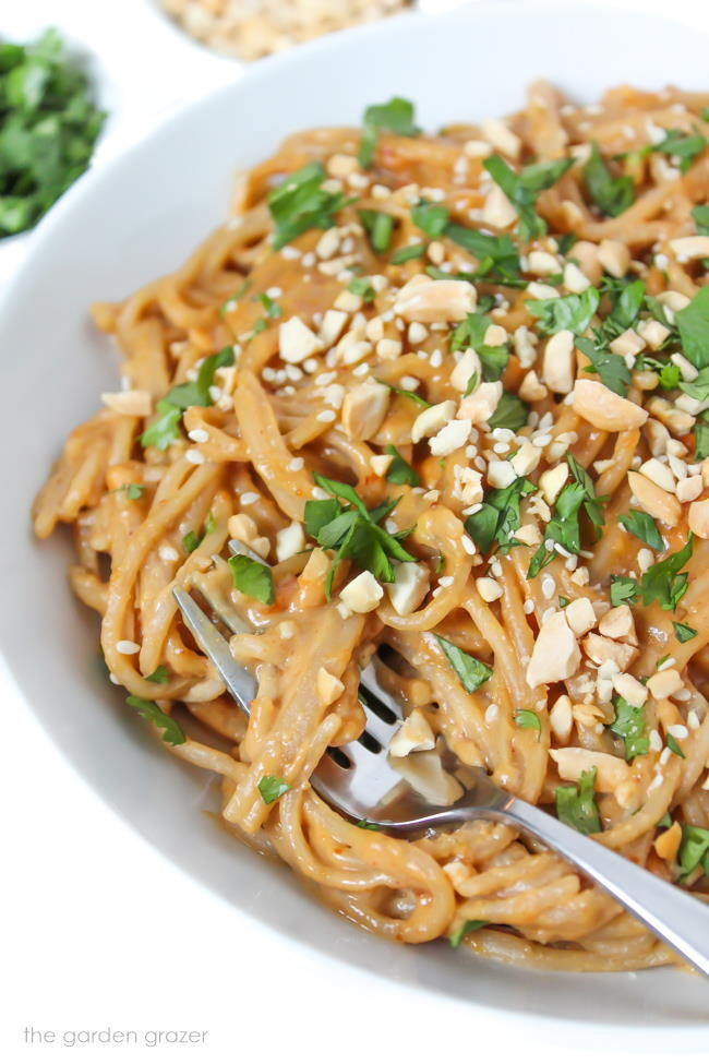 Creamy spaghetti noodles with peanut butter sauce in a white bowl with fork