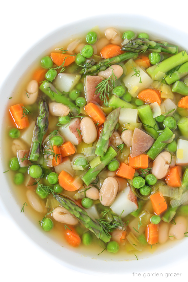 Bowl of vegan Spring Minestrone soup with fresh dill