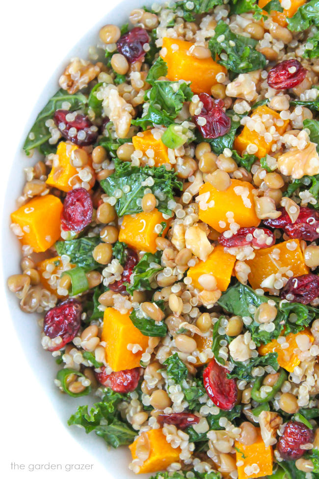 Vegan lentil quinoa autumn salad with butternut squash and kale in a bowl
