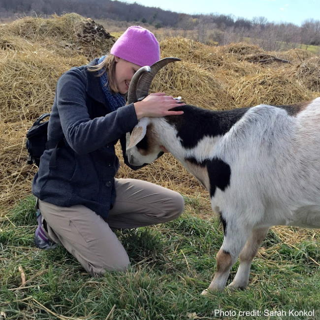 Sitting next to Michael the Goat at Heartland farm sanctuary in Madison Wisconsin